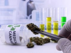Medical Cannabis Users Suffer Data Breach
